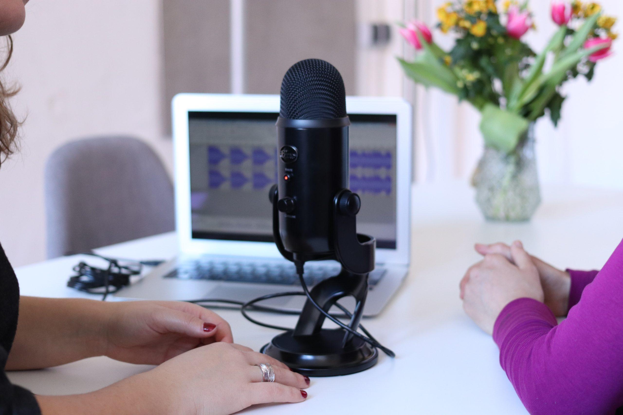 バ美声の音質を整える!声の後ろで聞こえる雑音・ノイズをとる方法